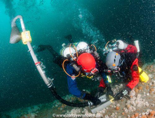 Duikexpeditie keert terug van verkenning uniek Noordzeegebied Borkumse Stenen