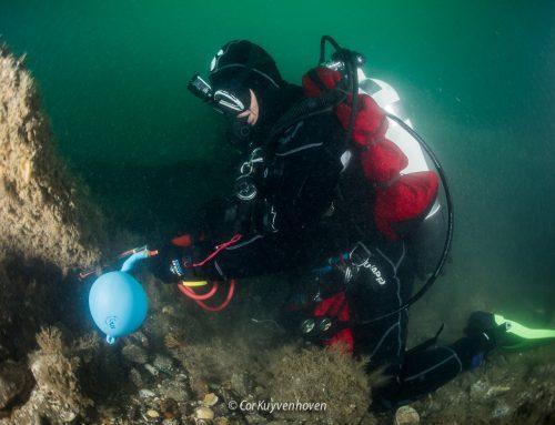 Alle soorten in één liter zeewater?