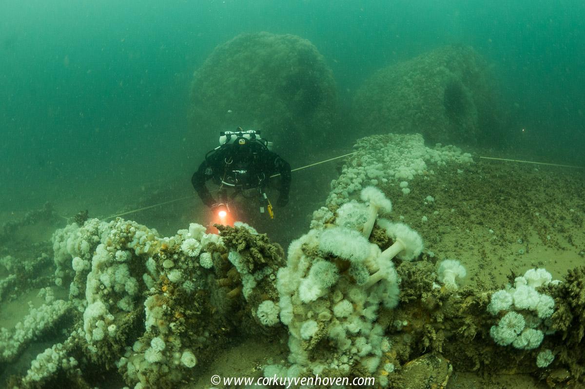 Prachtige onderwaterfoto's zijn onderdeel van onze lezingen