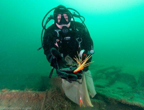 Duik-3-daagse als voorbereiding op Expeditie Noordzee 2020